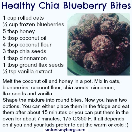 Chia Blueberry Snack