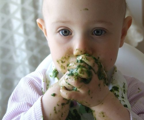 Toddler Eating Spinach