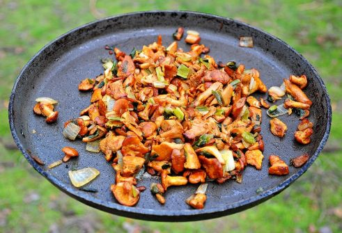 Healthy Food for Vegetarians - Mushrooms